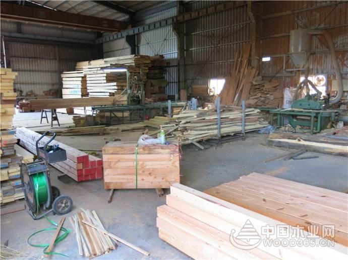 湖南湘潭70家木材加工企业全部整改或停产停业