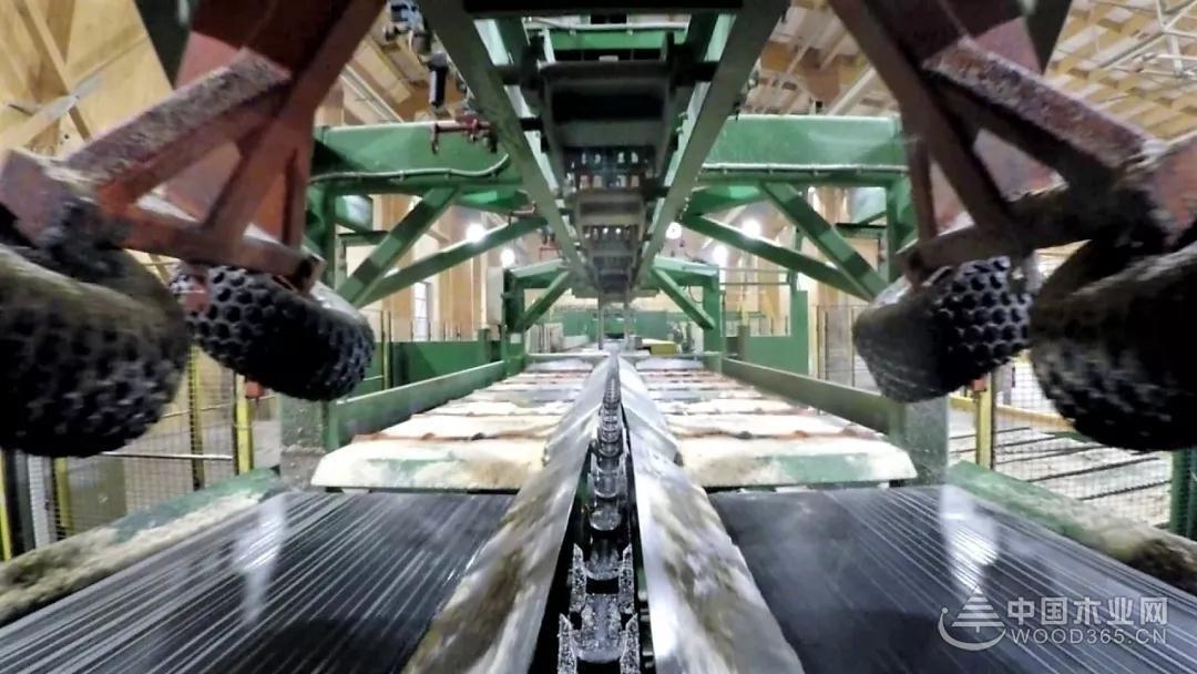 中國征收關稅導致美國鋸木廠利益受損