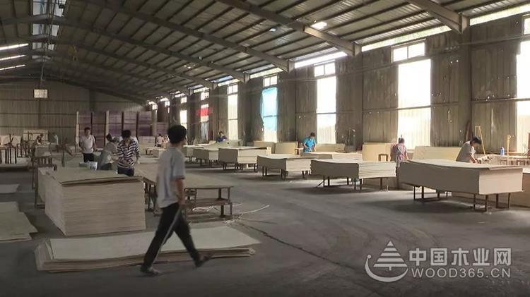 高质量创新提速郓城县木材加工产业转型升级