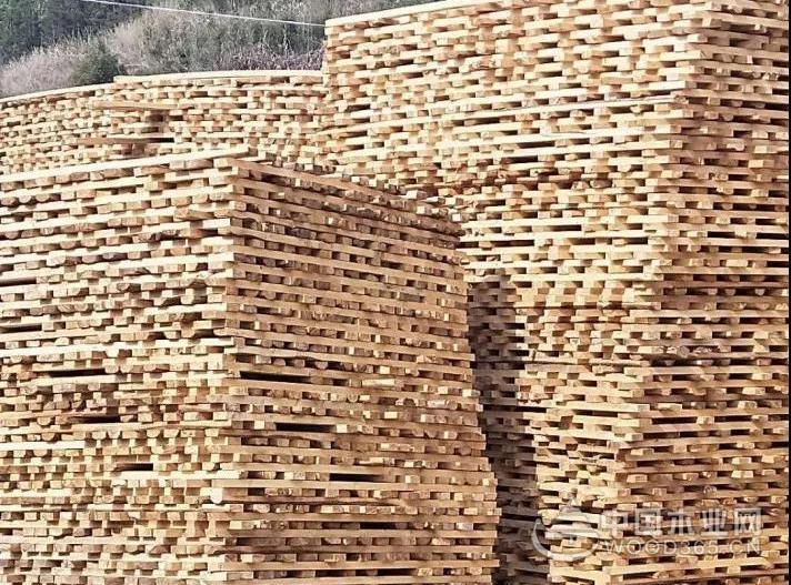 老挝沙耶武里省下令关闭85家木材加工厂!