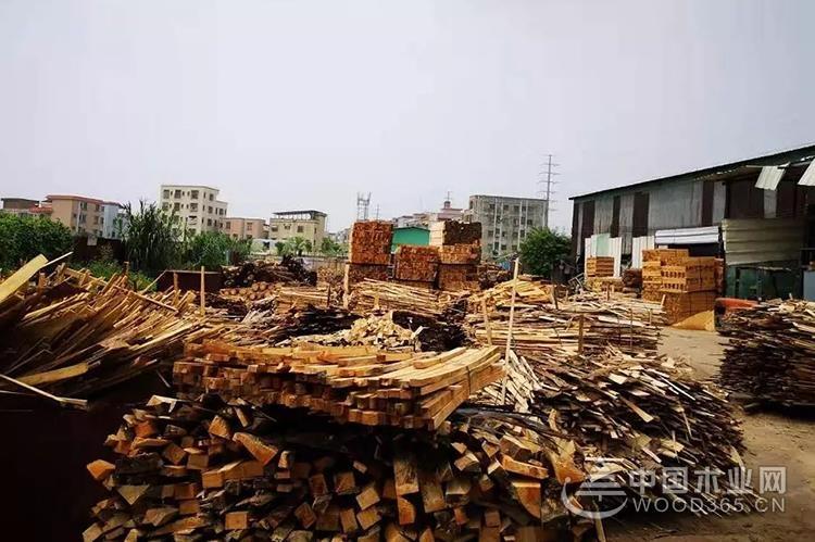 广东东莞沙田镇推进木材经营场所专项整治