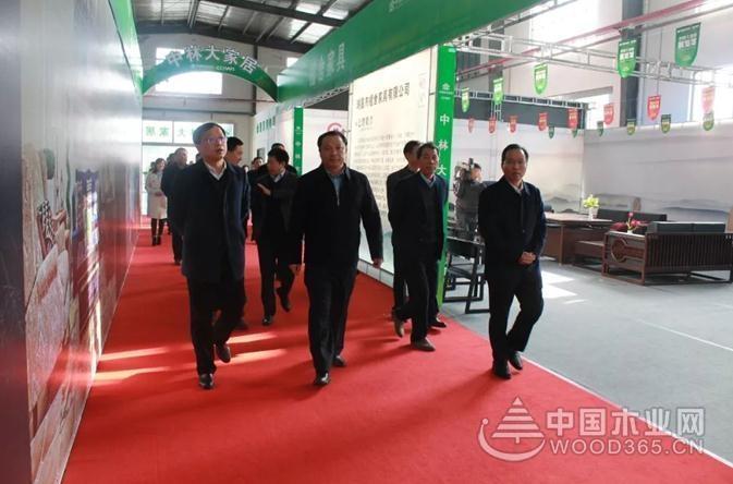 湖北武穴市党政代表团一行到华中国际木业园区考察
