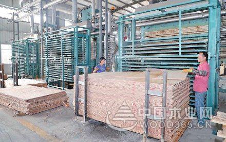 1至11月贵港木材加工业总产值327亿元