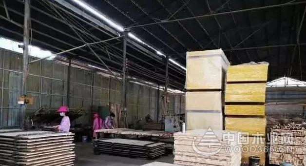 """江苏泗洪县:木材产业""""抱团式""""发展实现提质增效"""