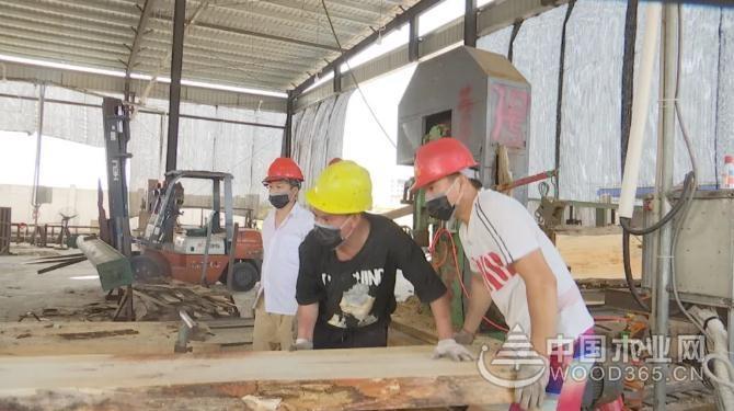 海南中顺国际木材产业园将打造全省首家大宗进口木材产品交易集散地
