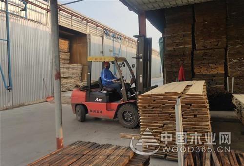 山东港口烟台港蓬莱港公司助力临港木材产业复工复产