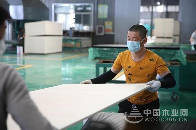 河北文安人造板产业集群迎来首批湖北籍返岗员工