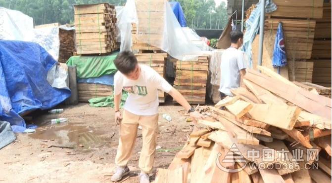 联合整治!广州永宁街依法取缔辖区内21间无证木材加工厂