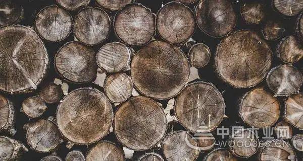 1-8月越南出口木材及木制产品73亿美元,同比增长9.6%