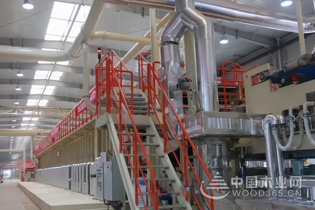 咸阳市领导来彬调研木业等重点项目建设进展