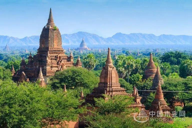 缅甸当局将发布14个木材出口可追溯性文件