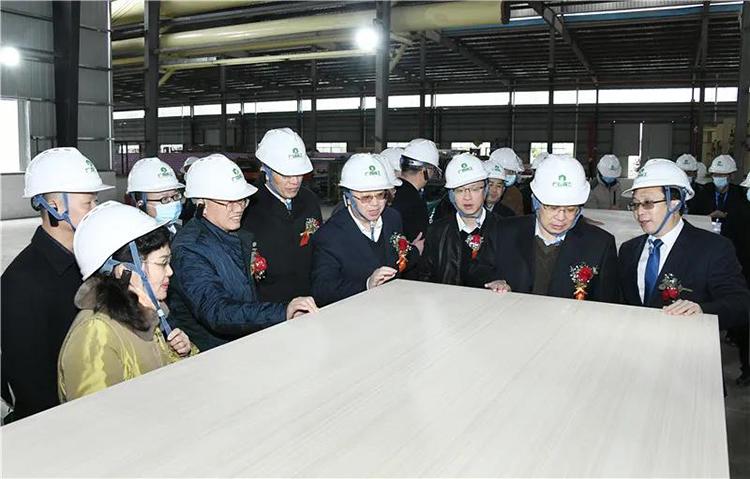 我国首条自动化胶合板生产线竣工投产
