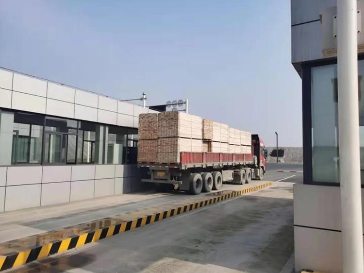 四川泸州完成首票出口美国木材保税集拼业务测试