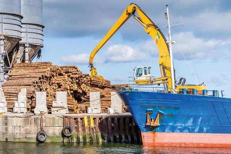 今年三季度英国将面临更为严重的木材短缺