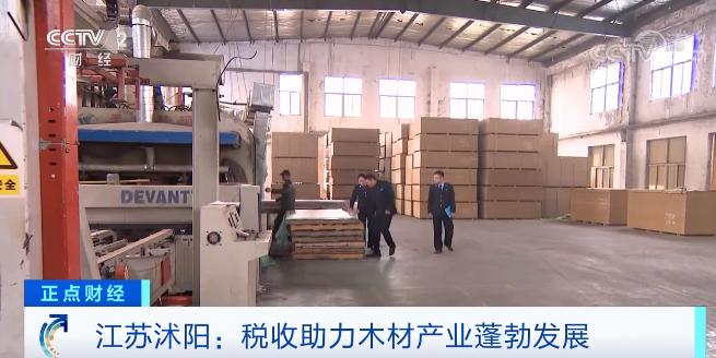 江苏沭阳:税收助力木材产业蓬勃发展