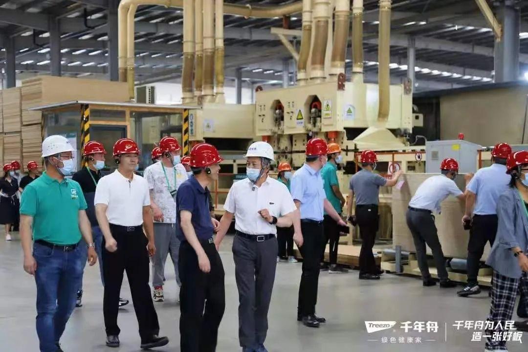 山东郯城红花镇规划建设3000亩优质板材产业园