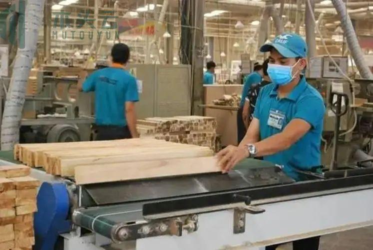 东南亚最 大家具代工厂受冲击全线停工