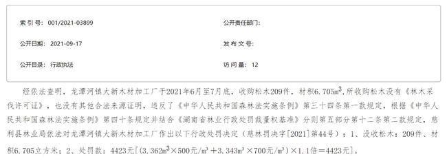 湖南张家界慈利县龙潭河大新木材加工厂无证收购松木被没收并罚款
