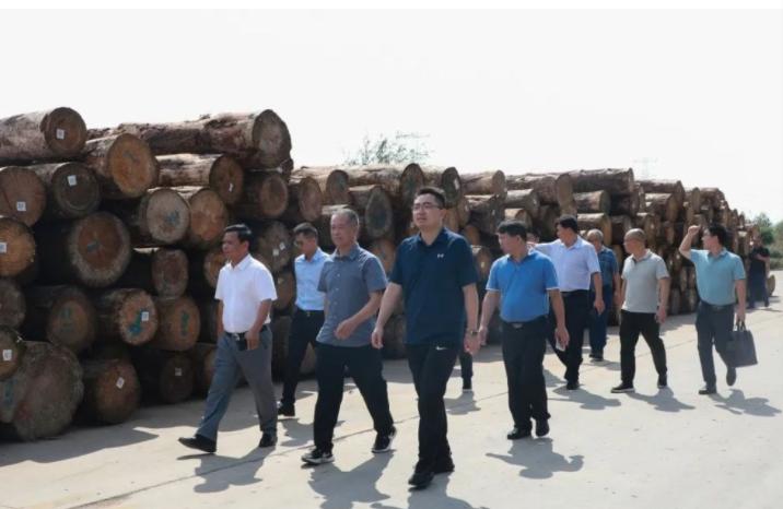 广西凌云县组团赴山东临沂考察学习木业发展