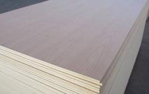 桦木胶合板适用于哪些领域