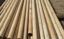 落叶松板材价格是多少?