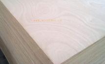 竹夹板的用途和特点