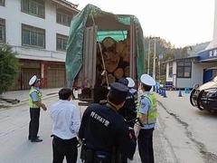 贵州从江查获一起非法运输木材案
