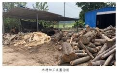 江苏高邮周山镇重拳整治散乱污木材加工点