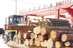 兰州新区打造全省首个<font color=#FF0000>俄罗斯</font>进口木材集散分拨中心