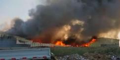 廊坊一家具厂失火铁皮厂房被烧吱嘎作响