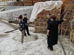 湖北宜昌五峰县依法处置多起无证运输木材案
