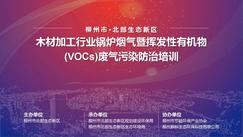 """柳州市北部生态新区木材行业""""帮企减污""""专项技术交流培训圆满举办!"""