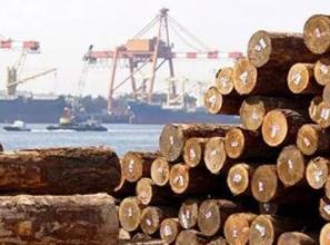 40多个国家进入紧急状态,木材出口企业要注意了!!