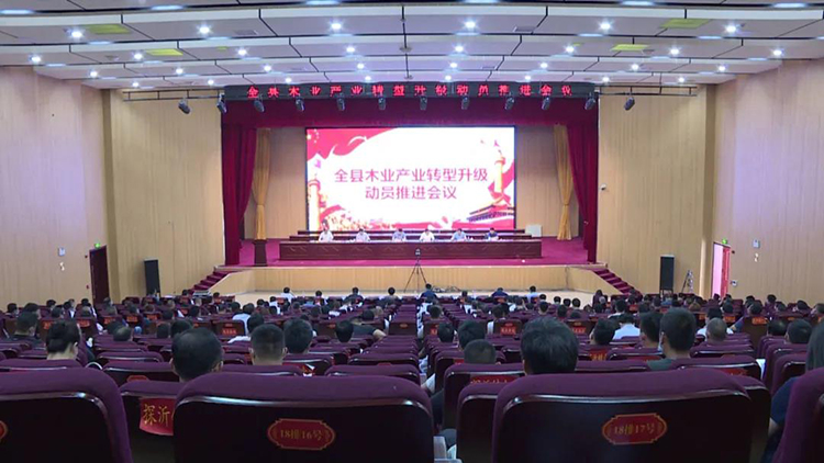 临沂费县召开木业产业转型升级动员推进会议