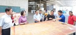 宿迁市外办领导携企业家代表考察桑墟镇木材产业发展情况