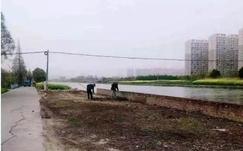 江苏启东拆除一处违法木材堆放及加工厂