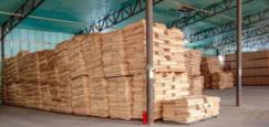 """辽宁建平县对木材加工企业开展安全生产""""回头看"""""""