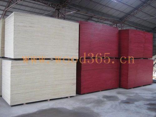 江苏沭阳建筑模板