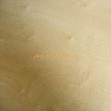 supply birch plywood