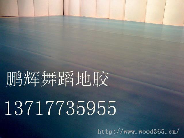 舞蹈专用地胶 舞蹈房专用地板舞蹈室地板