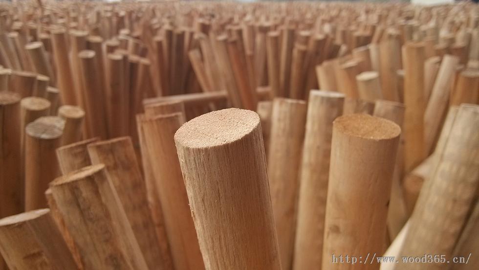 全国优质门套板供应、桉木供应、贴面板厂家、细木工板行情
