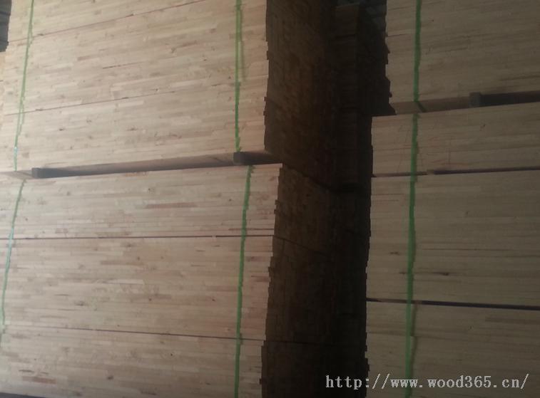 枫木体育地板