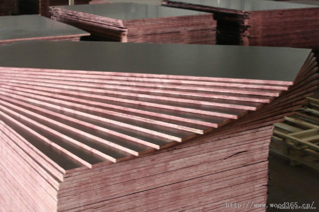 桉木木芯建筑模板