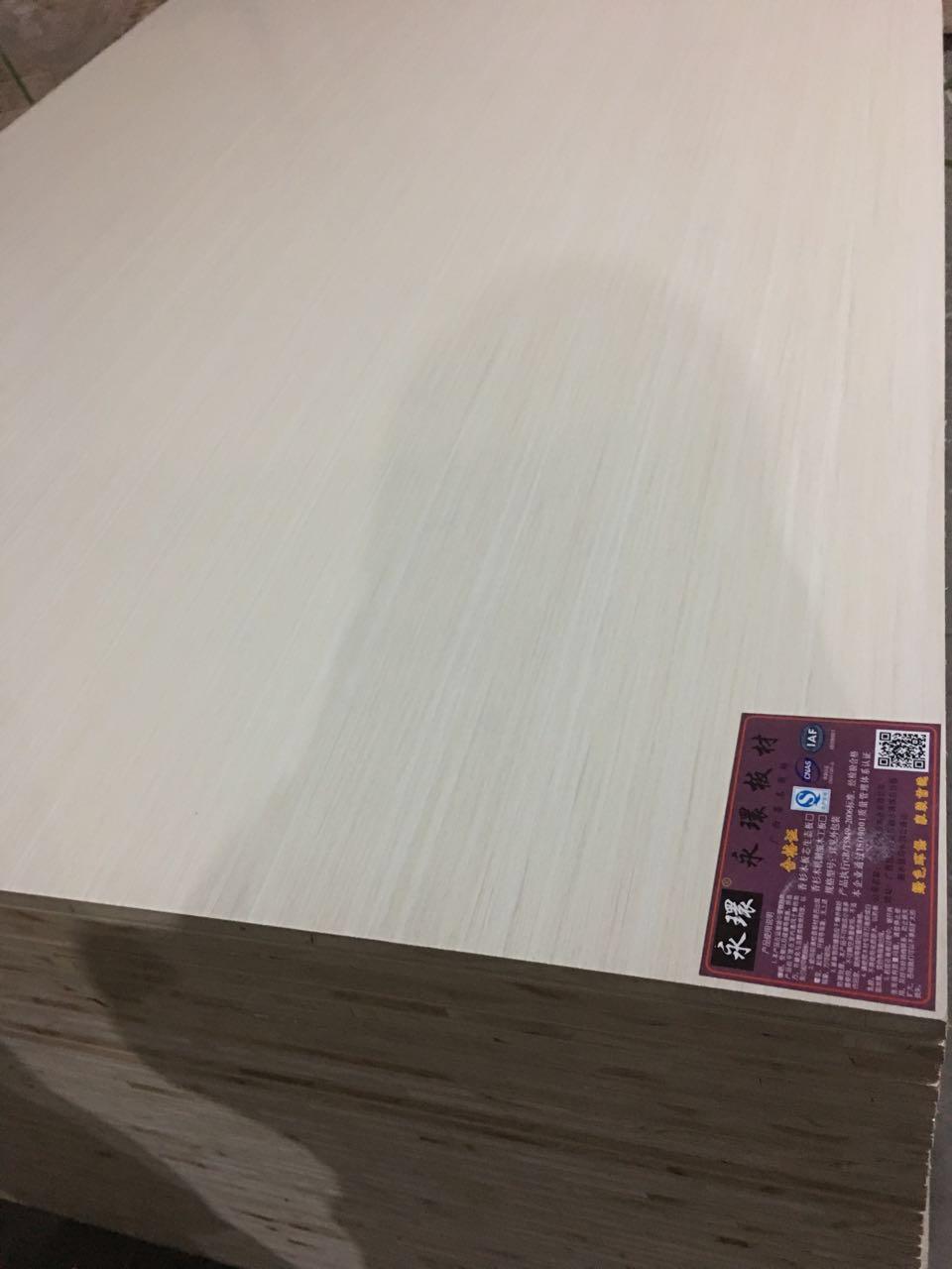 永環免漆板 生态板十佳品牌