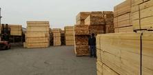 宁波辐射松建筑方木厂家