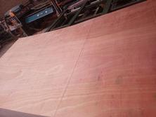 杨木多层包装板沙发板