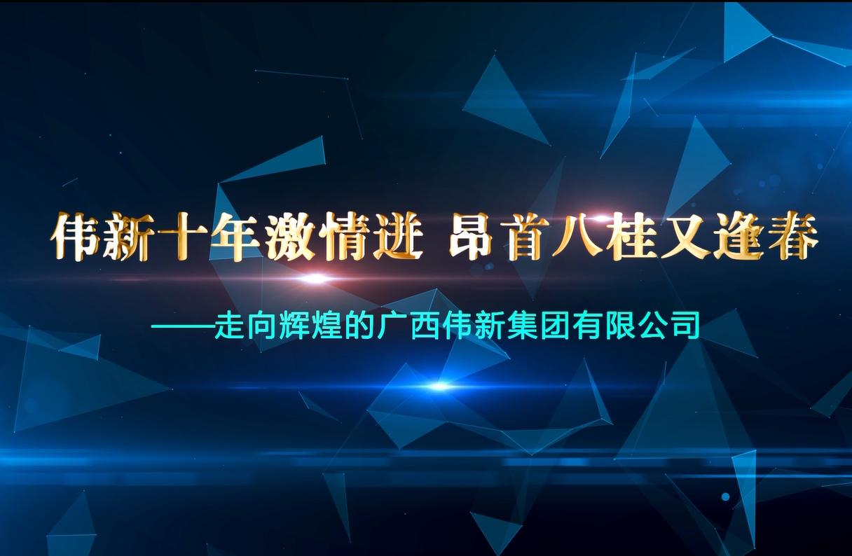 广西伟新集团十周年宣传片